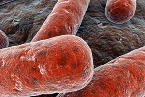 Лечение гарднереллеза у мужчин